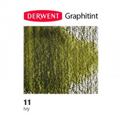 Bellearti-it-Derwent-GraphiTint-Grafite-Acquerellabile-Ivy