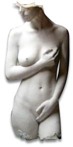 body sil